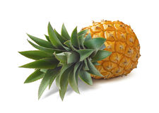 Lying pineapple isolated on white background Stock Photo
