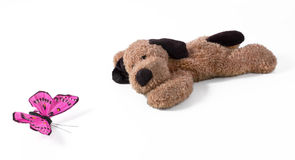 Lying Plush Dog With Silk Butterfly Stock Photo
