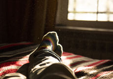 Lying and relaxing in bed opposite a window on a sunny day. Stock Photos