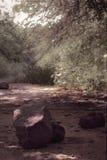 Lying rocks on the way towards the jungle stock photo