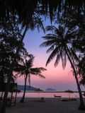 Lying under palm trees at sunset royalty free stock images