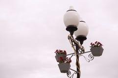Lykta med att blomma blommor Höst med mörk himmel royaltyfria bilder