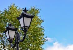 Lykta som exponerar gatan i mörkret mot den gröna lövverket av träd royaltyfri foto