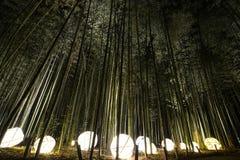 Lyktaljusskärm i en bambuskog för nattbelysningfestivalen i Kyoto, Japan royaltyfri foto