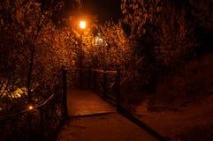 Lyktan i natten parkerar Arkivbilder