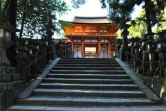 Lyktor i Nara royaltyfri foto