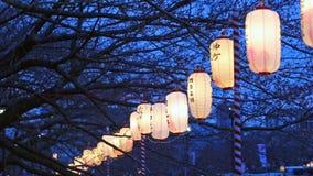 Lyktor i Sakura Festival Tokyo, Japan lager videofilmer