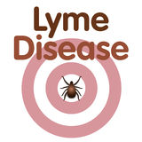 Lyme Disease, Tick, Bulls eye Rash. Lyme Disease graphic illustration, bulls-eye rash, tick, title text isolated on white vector illustration