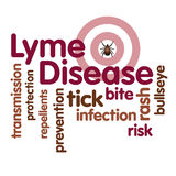 Lyme Disease Word Cloud, Tick, Bulls eye rash Stock Image