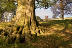 Lyme Park stock images