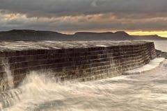 Lyme Regis - Cobben Arkivbilder