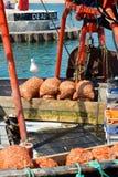 Lyme Regis Dorset Regno Unito Immagini Stock Libere da Diritti
