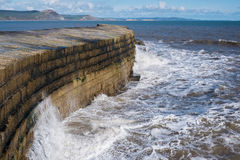 LYME REGIS, DORSET/UK - 22-ОЕ МАРТА: Стена гавани Cobb в Lyme Стоковая Фотография RF