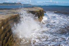 LYME REGIS, DORSET/UK - 22-ОЕ МАРТА: Стена гавани Cobb в Lyme Стоковое Фото