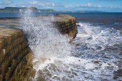 LYME REGIS, DORSET/UK - 22. MÄRZ: Die Cobb-Hafen-Wand in Lyme Lizenzfreie Stockbilder