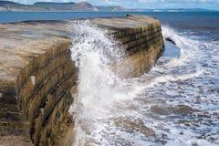 LYME REGIS, DORSET/UK - 22. MÄRZ: Die Cobb-Hafen-Wand in Lyme Lizenzfreies Stockfoto