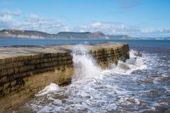 LYME REGIS, DORSET/UK - MARZEC 22: Cobb schronienia ściana w Lyme Zdjęcia Stock