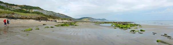 Lyme Regis  Fossel beach on the Dorset coast, Uk Stock Images