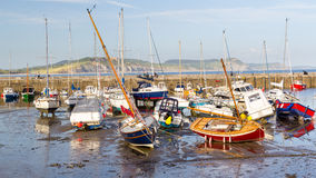 Lyme Regis Harbour Dorset Stock Photography