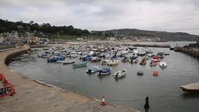 Lyme Regis harbour Dorset England UK with boats moored stock video footage