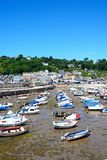 Lyme Regis Harbour and town. Stock Photography