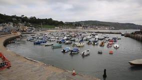 Lyme Regis schronienie Dorset Anglia UK z łodziami cumować zdjęcie wideo