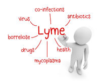 Lyme Stock Images