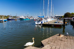 Lymington Hampshire England royaltyfri fotografi