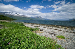 Lyngenfjord coastline Stock Images