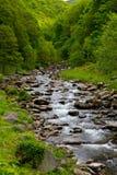 lynmouth lyn Девона около watersmeet реки Стоковое Фото