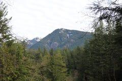 Lynn Canyon Park lizenzfreie stockbilder