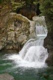 Lynn Canyon Park Twin Falls, norr Vancouver Arkivbild