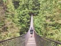 Lynn Canyon Suspension Bridge royalty-vrije stock fotografie