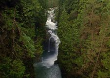 Lynn-Schlucht, Vancouver, Kanada Lizenzfreies Stockbild