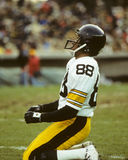 Lynn Swann Stock Photos