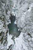 Lynn Valley Park op sneeuwdag stock afbeeldingen