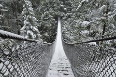 Lynn Valley Park am schneebedeckten Tag lizenzfreie stockfotografie