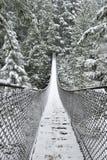 Lynn Valley Park am schneebedeckten Tag stockfotografie