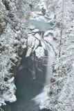 Lynn Valley Park am schneebedeckten Tag lizenzfreie stockfotos