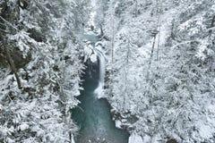Lynn Valley Park am schneebedeckten Tag stockbilder