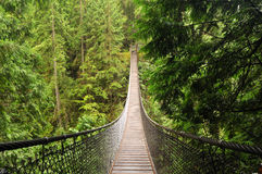 Lynn valley suspension bridge Royalty Free Stock Images