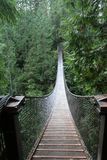 Lynn Valley suspension bridge. At beginning looking on Royalty Free Stock Images