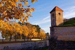 Lynne för höst för fästning för WÃ-¼lzburg Royaltyfri Bild