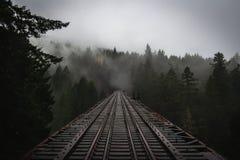Lynniga Forest Trestle arkivfoto