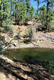 Lynx湖,布拉德肖别动队员区,普里斯科特国家森林,亚利桑那州,美国 图库摄影