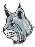 Lynx Photos stock