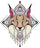 Lynx colorful design of tattoos and t-shirts royalty free illustration