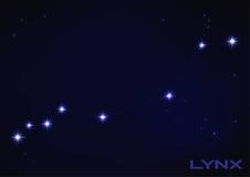 Lynx constellation. Vector illustration of Lynx constellation in blue