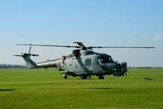Lynx de Westland sur la voie de vol Images stock