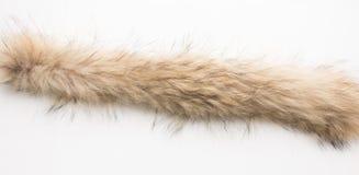 Lynx fur. Texture. Stock photos Top view. Close-up Stock Photo